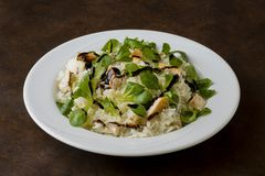 Κοτόπουλο και ρύζι με τη σαλάτα valeriana Στοκ φωτογραφία με δικαίωμα ελεύθερης χρήσης