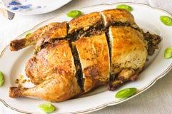 κοτόπουλο που γεμίζετ&alp Στοκ Φωτογραφίες