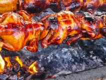 Κοτόπουλο σχαρών Στοκ εικόνες με δικαίωμα ελεύθερης χρήσης