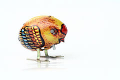 κοτόπουλο χαριτωμένο Στοκ Εικόνες