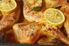 Κοτόπουλο λεμονιών Στοκ Εικόνες