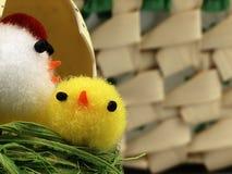 Κοτόπουλο και αυγά Πάσχας στη φωλιά Στοκ εικόνα με δικαίωμα ελεύθερης χρήσης