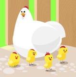 Κοτόπουλο κινούμενων σχεδίων με τέσσερα κοτόπουλα Στοκ Εικόνα