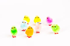 Κοτόπουλο Πάσχας Στοκ φωτογραφία με δικαίωμα ελεύθερης χρήσης