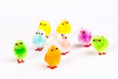 Κοτόπουλο Πάσχας Στοκ Εικόνες