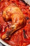 κοτόπουλο πικάντικο Στοκ Φωτογραφία