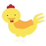 κοτόπουλο που απομονώνεται Στοκ φωτογραφία με δικαίωμα ελεύθερης χρήσης