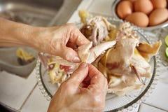 κοτόπουλο που τεμαχίζεται Στοκ Εικόνα