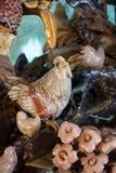 Κοτόπουλο που χαράζεται Στοκ Εικόνες