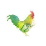 Κοτόπουλο πολυγώνων Στοκ φωτογραφία με δικαίωμα ελεύθερης χρήσης