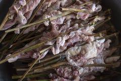 Κοτόπουλο στη σόμπα Στοκ φωτογραφίες με δικαίωμα ελεύθερης χρήσης