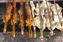 Κοτόπουλο στη σόμπα Στοκ Φωτογραφίες
