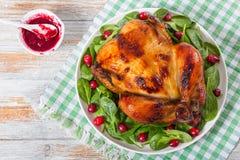 Κοτόπουλο σχαρών και σαλάτα arugula, σπανακιού και των βακκίνιων Στοκ φωτογραφία με δικαίωμα ελεύθερης χρήσης