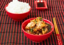 Κοτόπουλο Kung Pao - πιάτα παραδοσιακού κινέζικου Στοκ Εικόνα