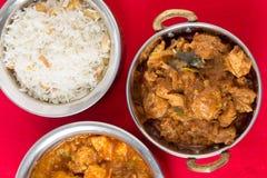 Κοτόπουλο Malabar με το ρύζι Στοκ εικόνες με δικαίωμα ελεύθερης χρήσης