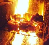 Κοτόπουλο Smokey Στοκ Εικόνες