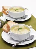 Κοτόπουλο soupe με την παρμεζάνα και το ψωμί Στοκ Εικόνες