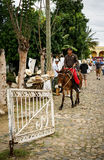 Κουβανικοί κάουμποϋ, Gaucho και τα άλογά τους Στοκ φωτογραφία με δικαίωμα ελεύθερης χρήσης