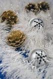 κουδούνια pinecones Στοκ Εικόνες