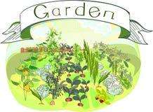 Κουζίνα-κήπος με τον τίτλο ελεύθερη απεικόνιση δικαιώματος