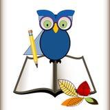 Κουκουβάγια με τα ανοικτά βιβλία και τα μολύβια Στοκ εικόνα με δικαίωμα ελεύθερης χρήσης