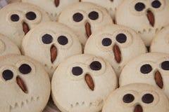 κουκουβάγια μπισκότων Στοκ Φωτογραφία
