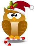 Κουκουβάγια Χριστουγέννων στο καπέλο santa Στοκ φωτογραφία με δικαίωμα ελεύθερης χρήσης