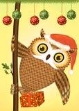 Κουκουβάγια Χριστουγέννων ελεύθερη απεικόνιση δικαιώματος