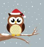 Κουκουβάγια Χριστουγέννων Στοκ εικόνες με δικαίωμα ελεύθερης χρήσης