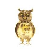 Κουκουβάγια Watercolor ελεύθερη απεικόνιση δικαιώματος