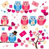Κουκουβάγιες αγάπης Στοκ Εικόνα