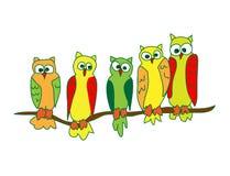 Κουκουβάγιες σε έναν κλάδο Ελεύθερη απεικόνιση δικαιώματος