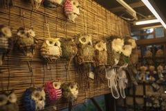 Κουκουβάγιες στο μανάβικο, Κίνα Στοκ Εικόνες
