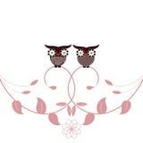 κουκουβάγιες φυλλώμα Στοκ εικόνα με δικαίωμα ελεύθερης χρήσης