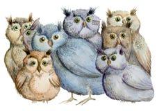 Κουκουβάγιες Watercolor διανυσματική απεικόνιση