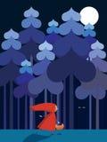 κουκούλα λίγη κόκκινη ο&de Στοκ φωτογραφία με δικαίωμα ελεύθερης χρήσης