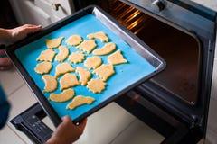 κουλούρια μπισκότων αρτοποιείων στοκ εικόνα με δικαίωμα ελεύθερης χρήσης