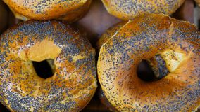 Κουλούρι με τους σπόρους παπαρουνών Φρέσκα κουλούρια από το φούρνο Μεταφορέας με το ψωμί r στοκ εικόνες με δικαίωμα ελεύθερης χρήσης