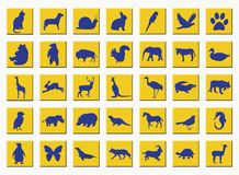 κουμπιά ζώων κίτρινα Στοκ φωτογραφίες με δικαίωμα ελεύθερης χρήσης
