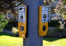 Κουμπιά διαβάσεων πεζών Στοκ εικόνα με δικαίωμα ελεύθερης χρήσης