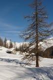Κουνάβι Courmayeur, Aosta κοιλάδα, Ιταλία Val Στοκ Εικόνες
