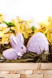 Κουνέλι και αυγό μπισκότων Πάσχας Στοκ Φωτογραφία