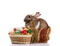 Κουνέλι και αυγά Πάσχας στοκ φωτογραφία