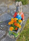 Κουνέλι και λουλούδια στοκ φωτογραφία με δικαίωμα ελεύθερης χρήσης