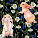 Κουνέλι μεταξύ των λουλουδιών Άνευ ραφής σχέδιο Watercolor Στοκ Φωτογραφίες