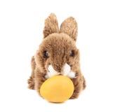 Κουνέλι Πάσχας και κίτρινο αυγό Στοκ Φωτογραφία
