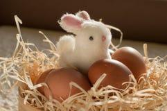 Κουνέλι Πάσχας μέσα σε ένα σύνολο κόσκινων των αυγών Πάσχας στο αγροτικό ξύλο Στοκ Εικόνες
