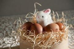 Κουνέλι Πάσχας μέσα σε ένα σύνολο κόσκινων των αυγών Πάσχας στο αγροτικό ξύλο Στοκ Φωτογραφίες