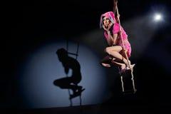 Κουνέλι που αναρριχείται στη σκάλα σχοινιών Στοκ εικόνες με δικαίωμα ελεύθερης χρήσης