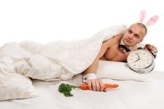 Κουνέλι που βρίσκεται στο κρεβάτι Στοκ εικόνες με δικαίωμα ελεύθερης χρήσης